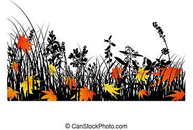 outono, silhuetas, prado