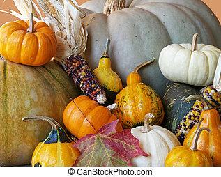 outono, squash, gourds, 2
