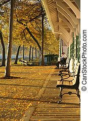 outono, station., trem