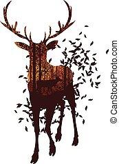 outono, veado, floresta, paisagem