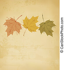 outono, vetorial, leaves., fundo