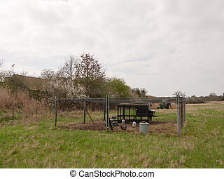 outside chicken hen coup fence gate farm field nature