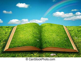 ouvert, magie, livre