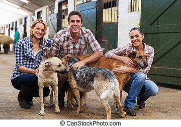 ouvriers ferme, groupe, chiens