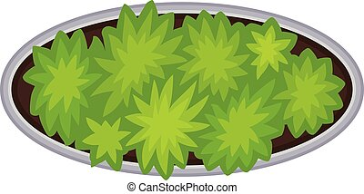 Oval flower bed with a border. View from above. Vector illustration on white background.