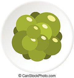 Ovary icon circle
