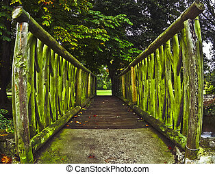 Over Suir - A little bridge passing over a stream from river...