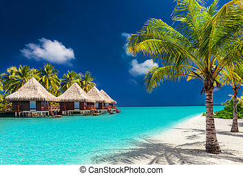 Over water bungalows on a tropical island with palm trees and amazing beach