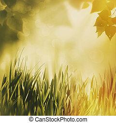overcoast, zomer, achtergronden, met, langzaam verdwenen,...