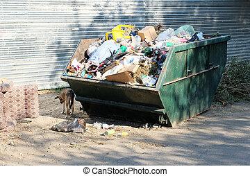 overfilled, neigborhood, dumpster, basura, rusia, gueto