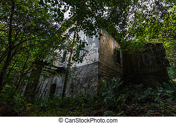 overgrown large abandoned yellow house in the forest