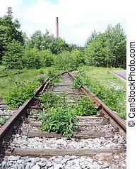 Overgrown railroad track