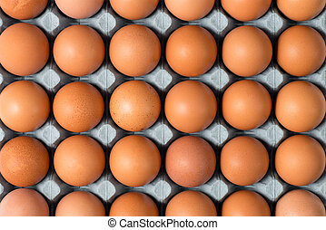Overhead Closeup of Chicken Eggs in Tray for Backgrounds