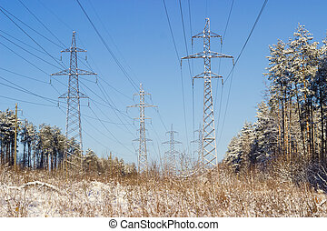 Overhead power lines against the backdrop sky and winter forest