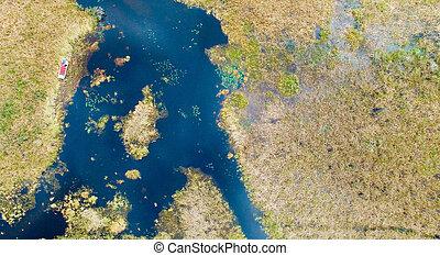 Overhead view of Florida Everglades.