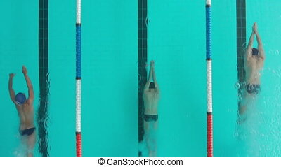Overhead view of multi-ethnic group of male swimmers at a ...
