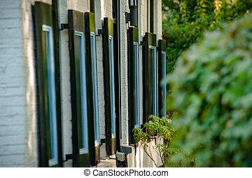 (overijssel), nord, casa fattoria, olandese, colori, netherlands:, luminoso, finestra, architettura, giethoorn, paesi bassi, tipico, otturatori, dettagli