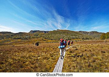 overland, excursionistas, australia, tasmania, rastro