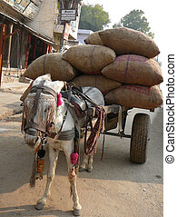 A donkey is carrying a cart filled with brown bags.