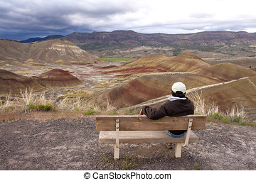 Overlook at Painted Hills, Oregon.