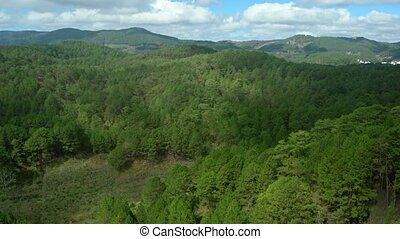 Overlooking View of a Forested Hillside under a Partly...