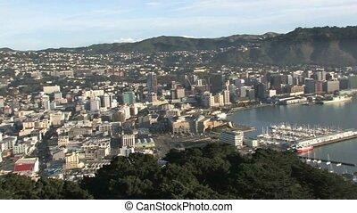 Overlooking Wellington harbour.