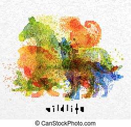 Overprint animals horse - Color animals ,horse, wolf, monkey...