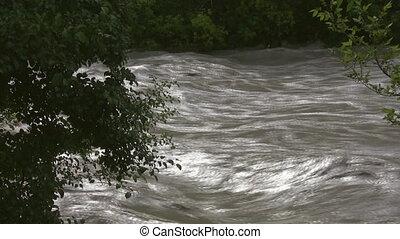overstroming, river., aanzicht, door, bomen.