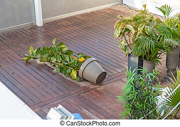Overturned Flower Pot at Patio After Storm Wind