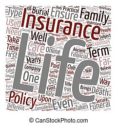 Overview And History Of Life Insurance text background wordcloud concept