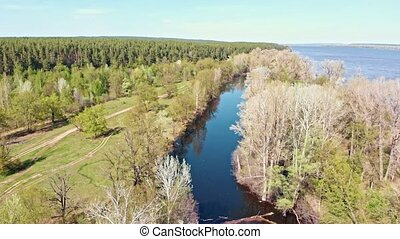 Overview of the river between the field with trees. Aerial shot