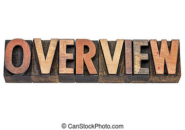overview - isolated word in vintage letterpress wood type printing blocks