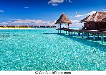overwater, ásványvízforrás, alatt, kék, mindenfelé, tropical sziget