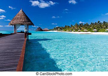 overwater, ásványvízforrás, alatt, lagúna, mindenfelé, tropical sziget