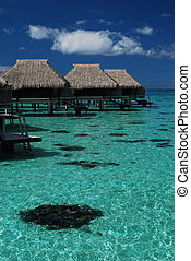 Overwater bungalows in Moorea - Over water bungalows over...