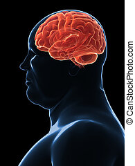 overweight male - brain - 3d rendered illustration of a male...