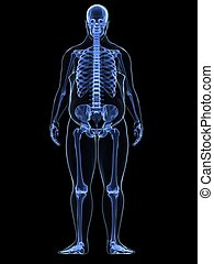 overweight male - skeleton - 3d rendered illustration of a...