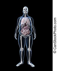 overweight man - anatomy - 3d rendered illustration of a...