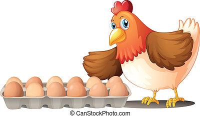 ovos, bandeja, galinha, dúzia