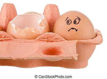 ovos, branca, bandeja, galinha, fundo