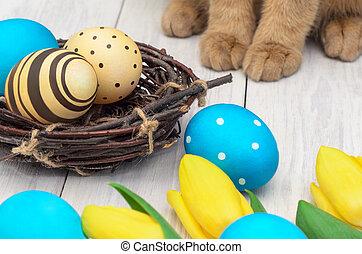 ovos, coelho páscoa