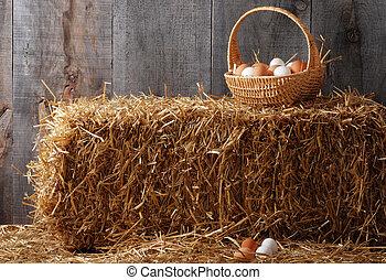 ovos, fardo feno, cesta