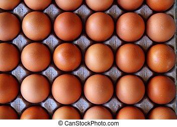ovos, filas, padrão, caixa, experiência alimento