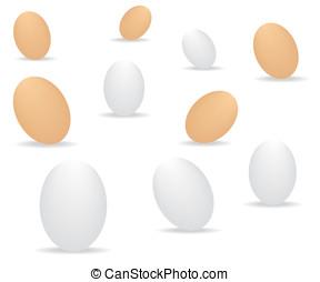 ovos, fundo branco