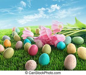 ovos páscoa, com, cor-de-rosa, tulips, ligado, capim