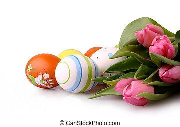 ovos páscoa, e, cor-de-rosa, tulips, isolado