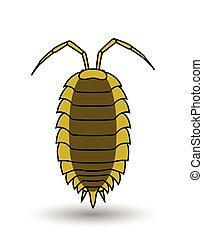 owad, wektor, sztuka, lice