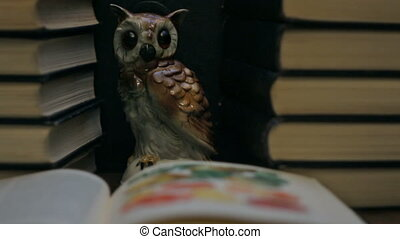 Owl among the stacks of books concept of wisdom, parallax