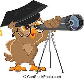 Owl astronomer looking through a telescope. Vector cartoon...