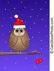 Owl at Christmas